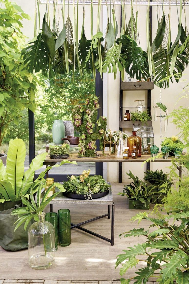 Dschungel-Feeling Hanging Pots