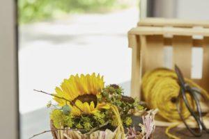 Sonnenblumen im Kugellook